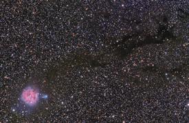 Cocoon Nebula Widefield