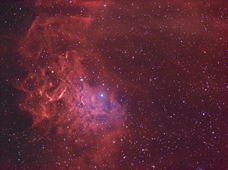 Flaming Star Nebula