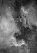 NGC7000 Widefield Mosaic