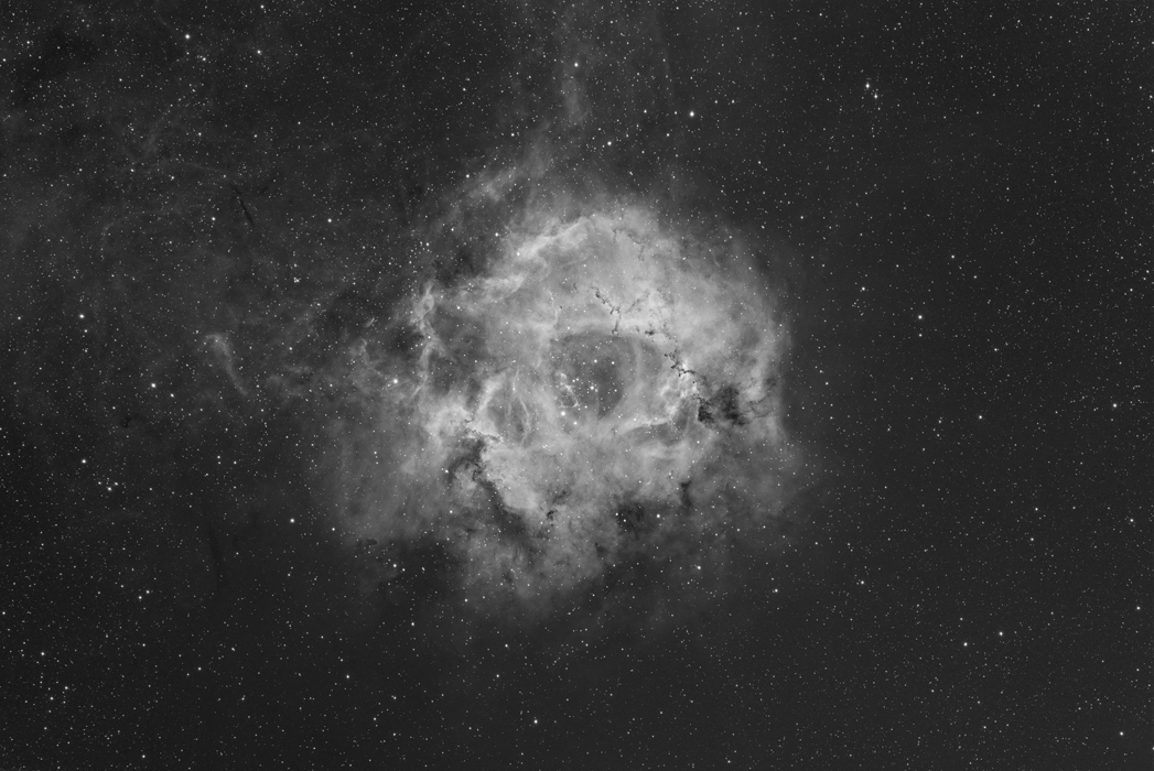 Rosette Nebula in Ha