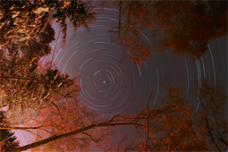 Autumn Star Trails